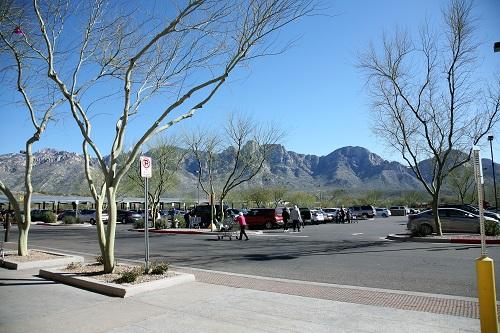 風景ー駐車場とカタリナ連山
