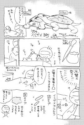 イシガメ漫画01.png