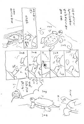 イシガメ201801.png
