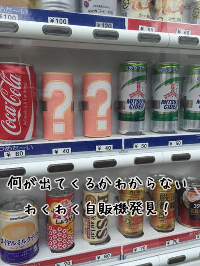 IMG_6851.jpg