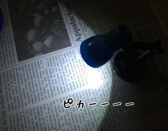 IMG_7210.jpg