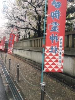 御霊神社の桜(2017/4/8)