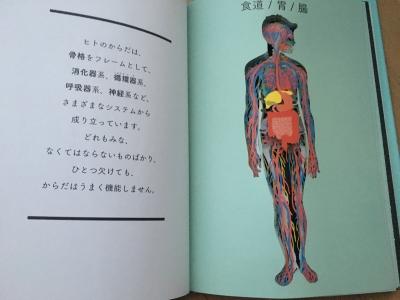 世界で一番美しい人体i切絵図鑑