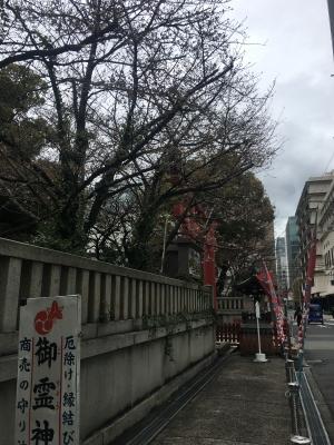 御霊神社の桜(2018/3/22)