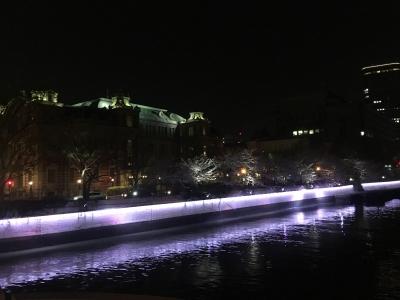 大阪市中央公会堂の夜桜