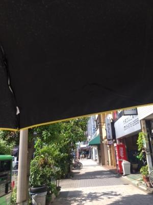晴雨兼用ブラックコーティング傘