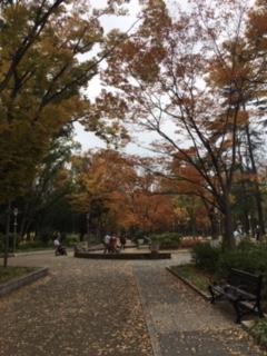 靭公園の秋(2018/11/28)