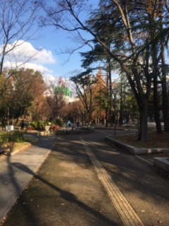 靭公園(2018/12/18)