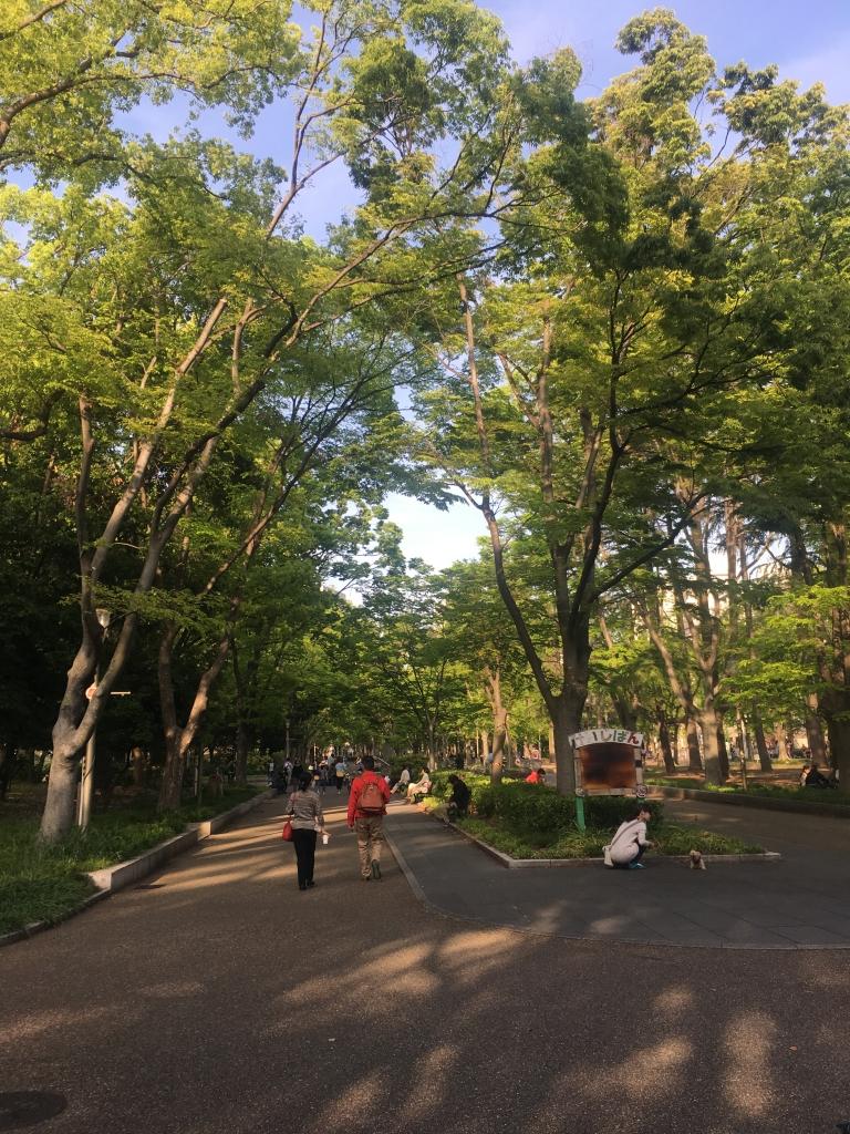 靭公園(2019/5/2)