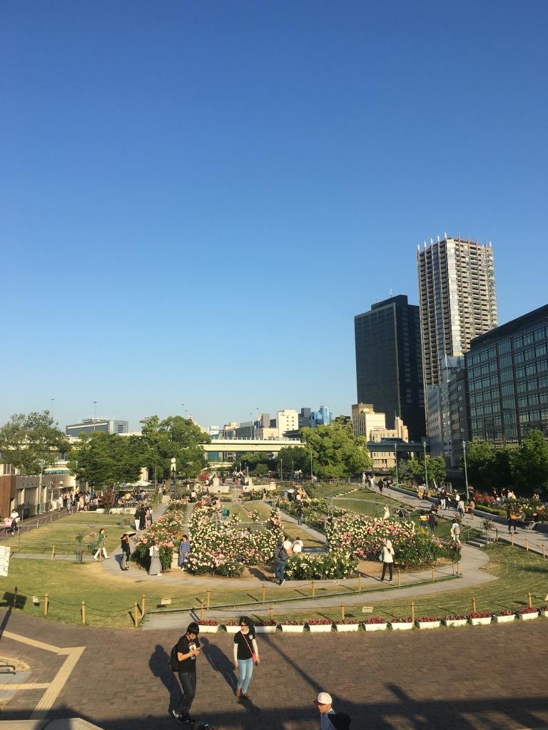 ばら園@中之島公園(2019/5/22)