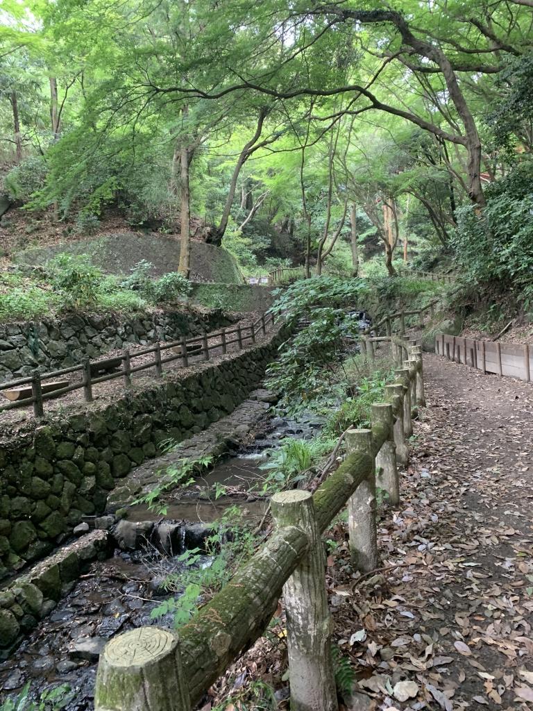 枚岡神社 展望台手前の川沿いの道