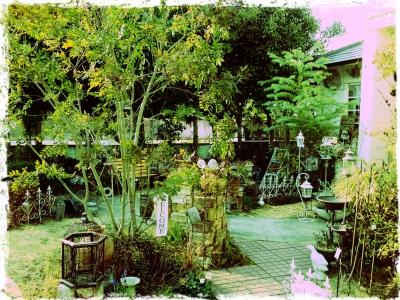 cassisさんのお庭