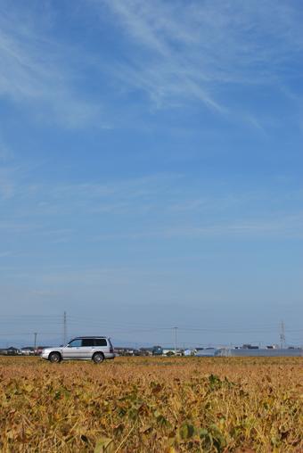 柳川の空2