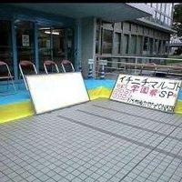 mojimaru4ae3a2579763b.jpg