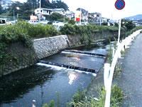 一本橋の堰跡