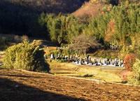 現在の長昌院跡