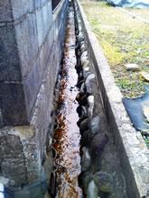 金渋のついた水路