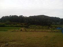 城山と段々畑