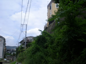 たぶち(北側)