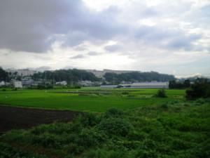 県道から田園風景を望む