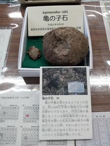 亀の子石の破片