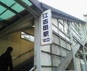 NEC_0809.jpg