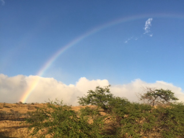 Kohala rainbow2