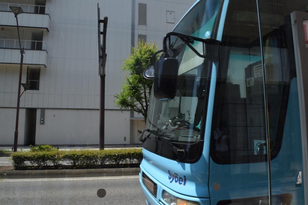 DSC_0256k.JPG