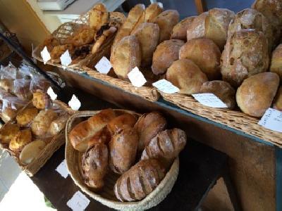 本日のパンたち