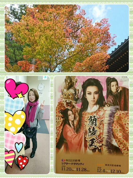 collage-1543061297645.jpg