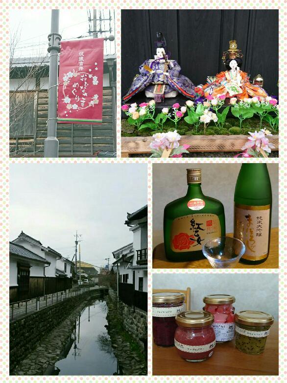 collage-1549943781342.jpg