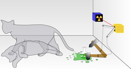 quantumcat