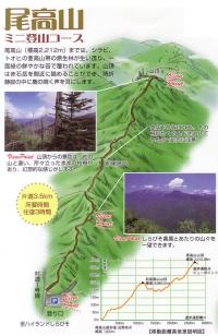 しらびそ高原_尾高山ハイキング8