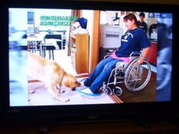 車椅子を引っ張る練習なの