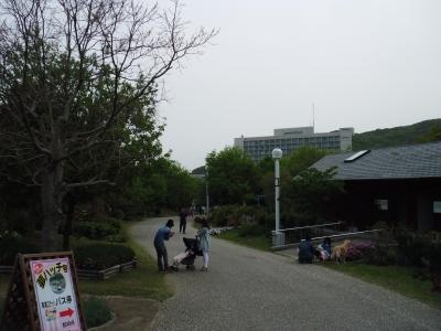 2011-5-4淡路花さじき