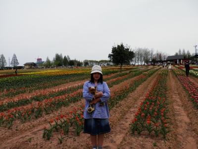 2012-4世羅高原