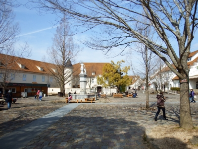 2015-2ドイツの森