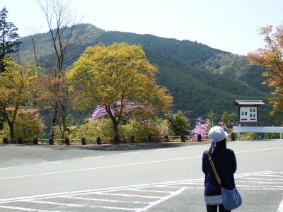 2015-4京都