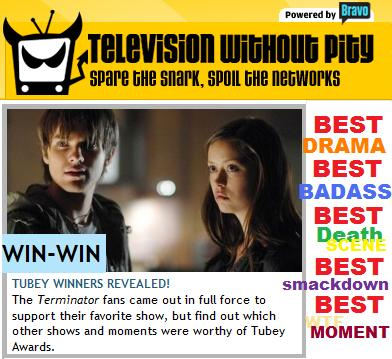 BEST TV SHOW Terminator Sarah Connor Chronicles No.1 won