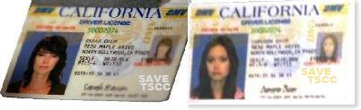 運転免許証 サラ・コナー キャメロン・フィリップス