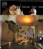 ロサンゼルス郡立 恐竜 自然史博物館
