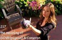 キャメロンと鳩の関係性 Arks DOVE