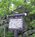 十和田湖畔 柱に化けた溶岩