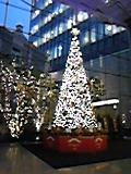 赤坂Bizタワー内のツリー