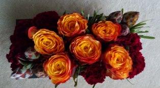 fioritura20111025.jpg