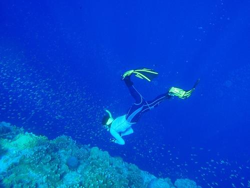 魚と女と珊瑚