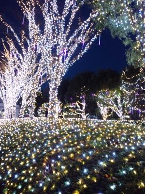 新宿クリスマスイルミネーション