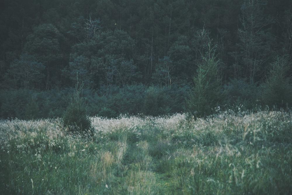 004-_U6A9784.jpg