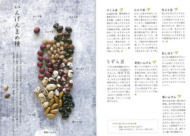 インゲン豆1