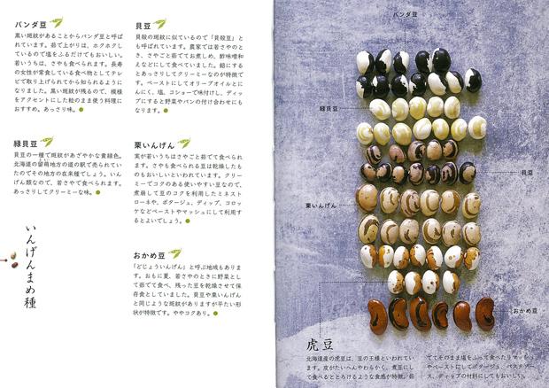 インゲン豆2
